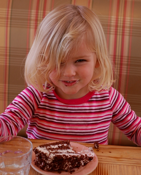 maggie-twd-chocolate-cake-0209