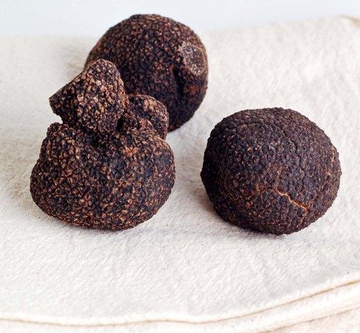 australian-truffles-0709