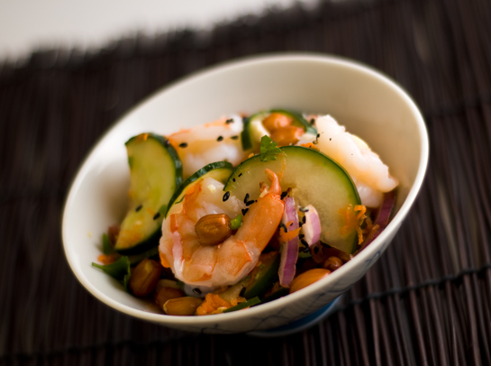 cucumber-shrimp-salad-0809