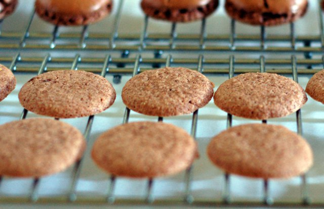 Macaron flops 1009